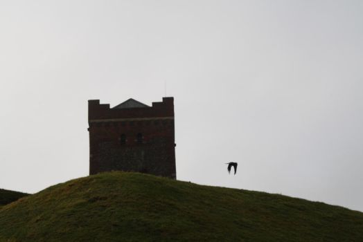 Hill and castle and bird by nuno1972