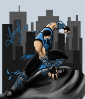 Sub-Zero by JamalNasirForever
