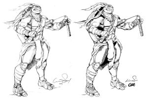 Michaelangeo of the Teenage Mutant Ninja Turtles by Cadre