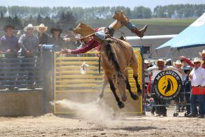 Taupo Rodeo 155 by Sooty-Bunnie