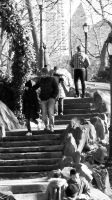 Steps by CaptRhodes