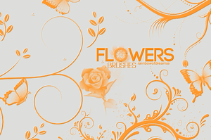 FLOWERS-BRUSHES-diame by RainbowOfDreamss