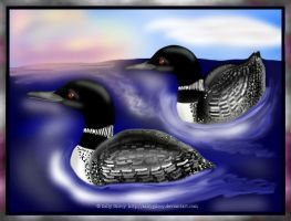 Loons At Sunset by sallygilroy