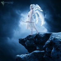 Too Cold To Fly by aanantart