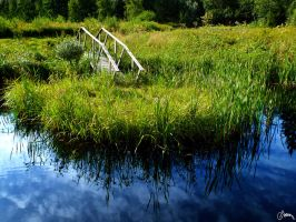 a Small Isle in a Small Pond by Carnaga