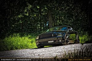 black snake by AmericanMuscle