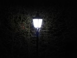 I have been one acquainted with the night by BasilCallahan