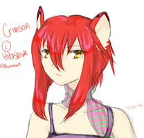Crimson by Ryuuchan4