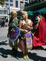 Hyrule Warriors Link and Zelda by BluIceyy
