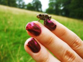 Frog Fingers by Madame-Mabsoot