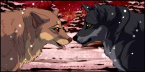 Random Wolves by Oha