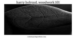 Woodwork 101 by H-Holroyd