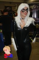 Black Cat at ACE 2 by norrit07