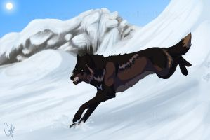 Dashing Through The Snow by InstantCoyote
