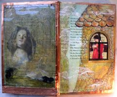 Altered Book: Frontispiece by hogret