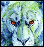 Noble Face: Mini Painting by daanzi