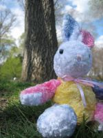 Central Park Bunny by looking-at-the-stars