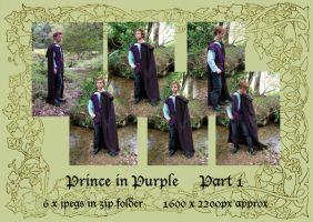 Prince Part 1_standing by GoblinStock