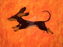 Leaping Doxie by navcallahan
