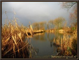 Indian Summer in Holland by Betuwefotograaf