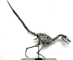 velociraptor not completed 1 by hannay1982