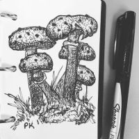 Doodle // lil mushies by MajesticPaula