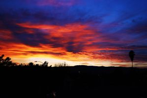 New Year's Sunset by veronicagibson