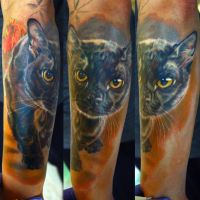 cat sleeve in progress by NikaSamarina