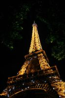 Night Lights in Paris by ellenrelander