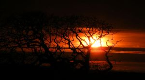 March 31st Sunset 1 by Jasman71