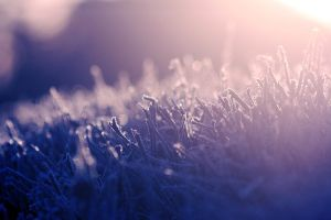 Frost by RobinHedberg