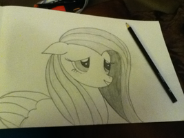 Fluttershy sketch by rosiewright