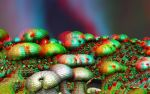 Aquatic Life Anaglyph by skyzyk