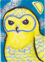 Summer Owl ATC by AluminumSunset