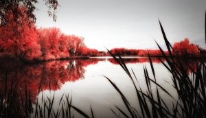 Red Pond by johnnie2bad