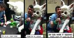 One of the best moments at PAX by MystikMeep