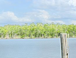 Everglades City Florida by stahlight