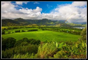 Good Morning Hanalei by aFeinPhoto-com
