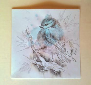 Blue Tit watercolor/pencil by Kissingwithjohn