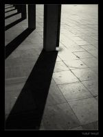 IN THE SHADOWS by 8088