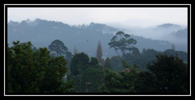 The Misty Waitakeres by gothkath