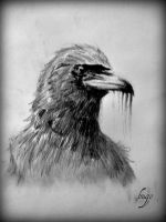 Murder of Crows by hugomaster5