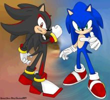 Sonic and Shadow the Hedgehogs by Xpand-Your-Mind