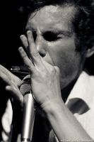 Blues Harmonica I by TheSoftCollision