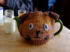 Teddy Teapot by sags