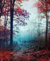 Red Forest III - stock by Aeternum-designs