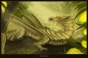Citrine Dragon by Majungatholus