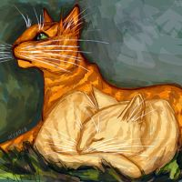 Firestar and Sandstorm by Ospreyghost13