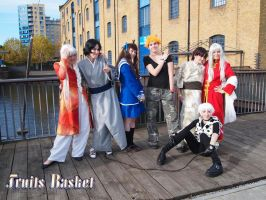 Fruits basket group MCM '10 by Fadedhowl