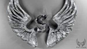S Wings Logo by saryking